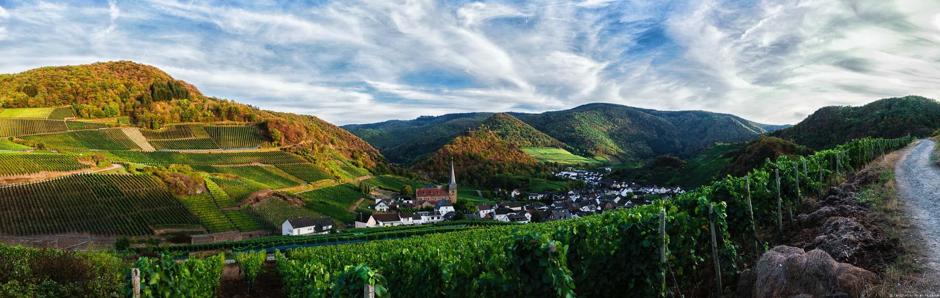 Talkessel im Weinanbaugebiet Ahr rund um den Ort Mayschoss; Weinberg Mayschosser Mönchberg; bewaldete Hügel; Himmel mit Wolken