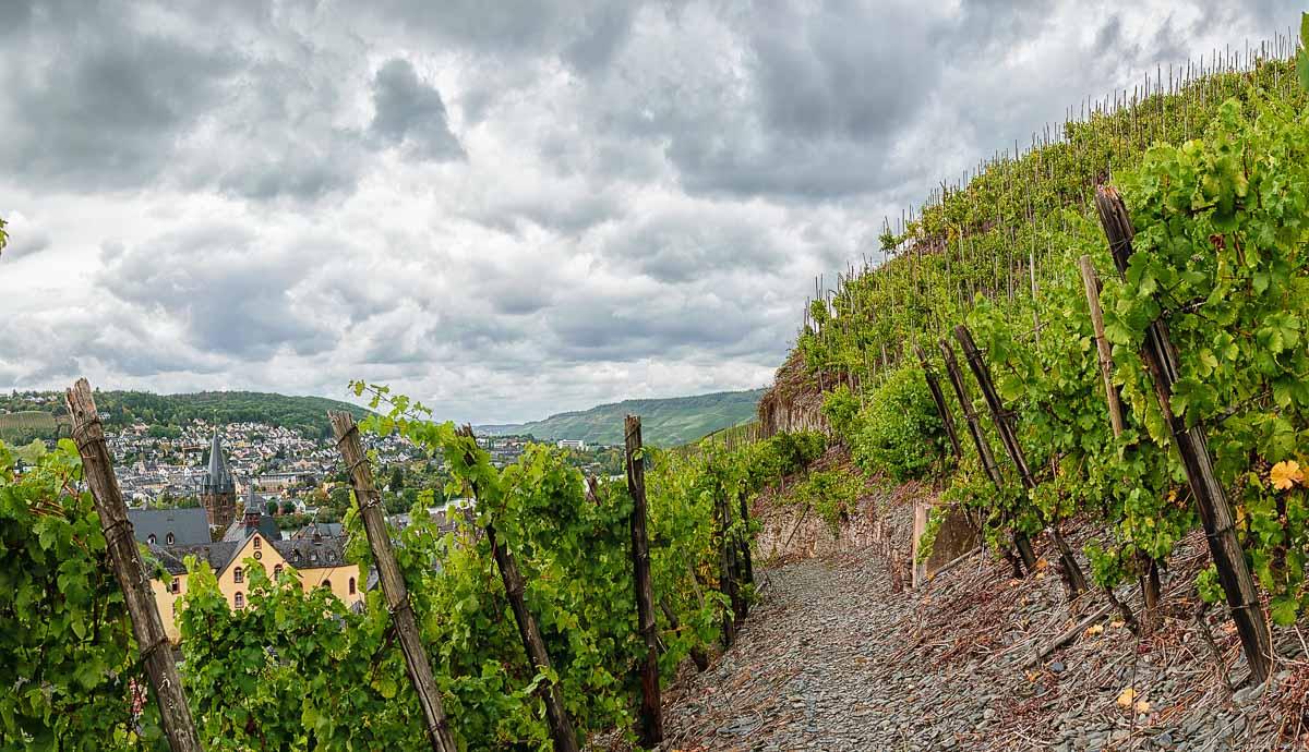 Hinter der Burg Landshut im Ort Bernkastel-Kues befindet sich ein Teil der Lage Bernkasteler Schlossberg. Auf dem Bild erkennt man einen Weg aus Schiefergestein und Rebstöcke an beiden Seiten. Unten links liegt der Ort Bernkastel-Kues. Der Himmel ist stark bewölkt.