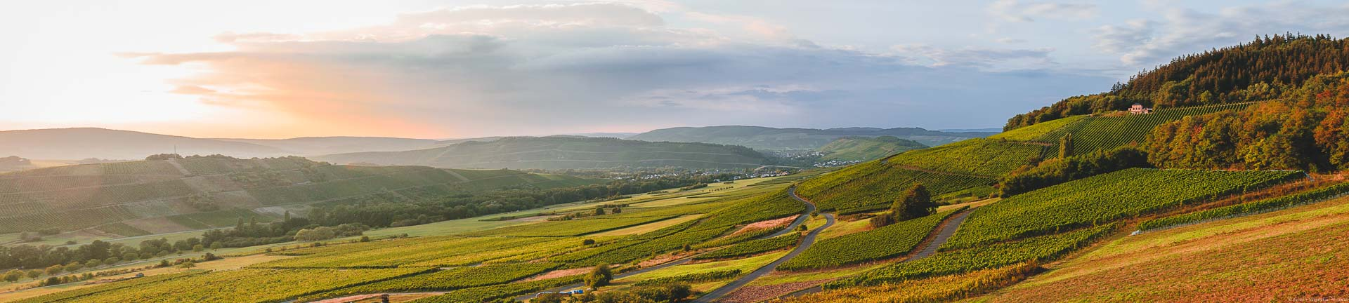 Sonnenuntergang vor den Mosel-Weinbergen der Grafschaft Veldenz