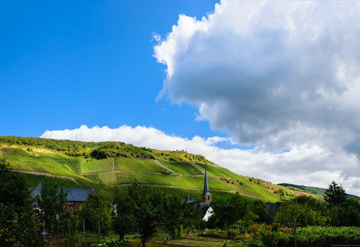Gärten, Ort Graach mit steilem Weinberg Graacher Domprobst dahinter und großer Wolke am blauen Himmel