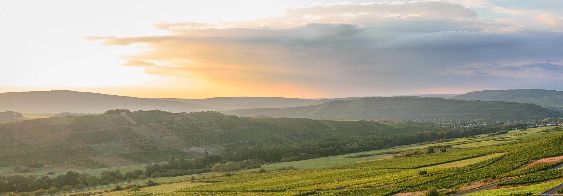 Die Ebene zwischen Veldenz und Brauneberg bietet dem Besucher wunderbare Sonnenuntergänge in der Weinlandschaft an der Mosel.