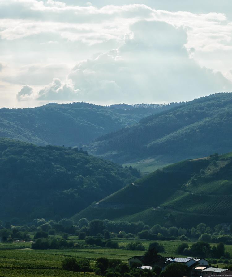 Der Weinberg Kestener Herrenberg staffelt sich hintereinander. Oben türmen sich Wolken auf.