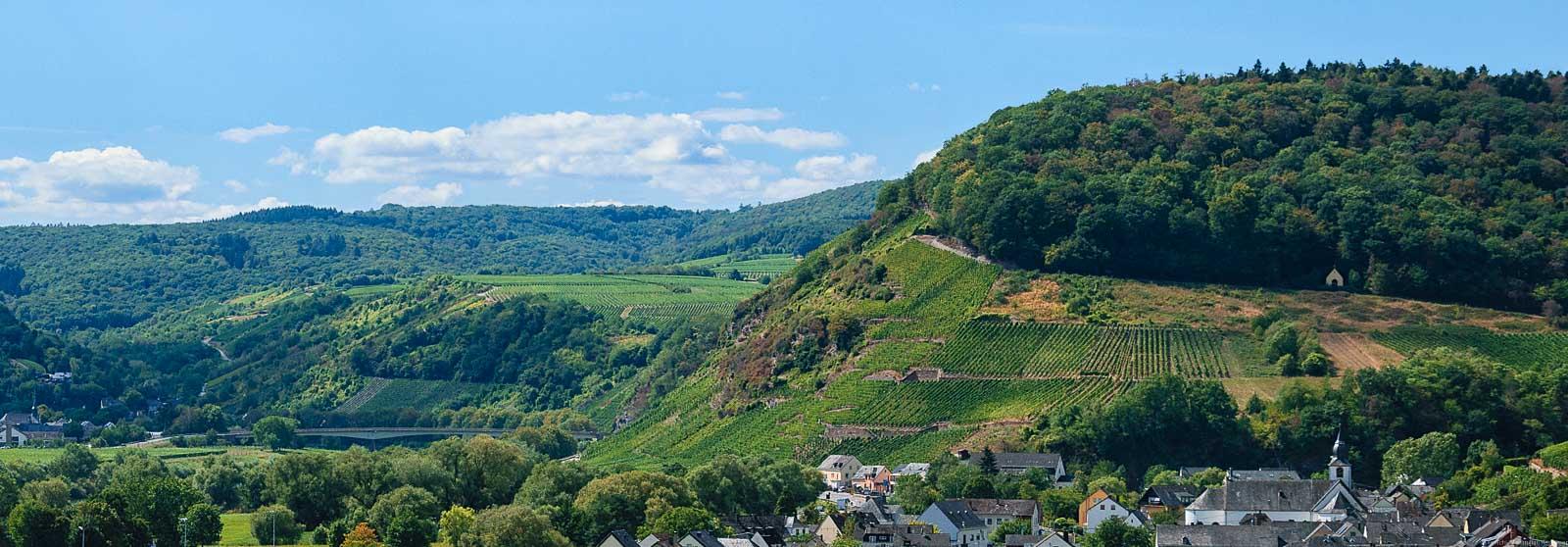 Vorne rechts befinden sich Häuser des Ortes Klüsserath. Dahinter türmt sich der steile Weinberg Klüsserather Bruderschaft auf. Am oberen Ende des Weinberges befindet sich Wald. Im Hinterrund sind weitere Weinberge, bewaldete Hügel, blauer Himmel und Wolken.