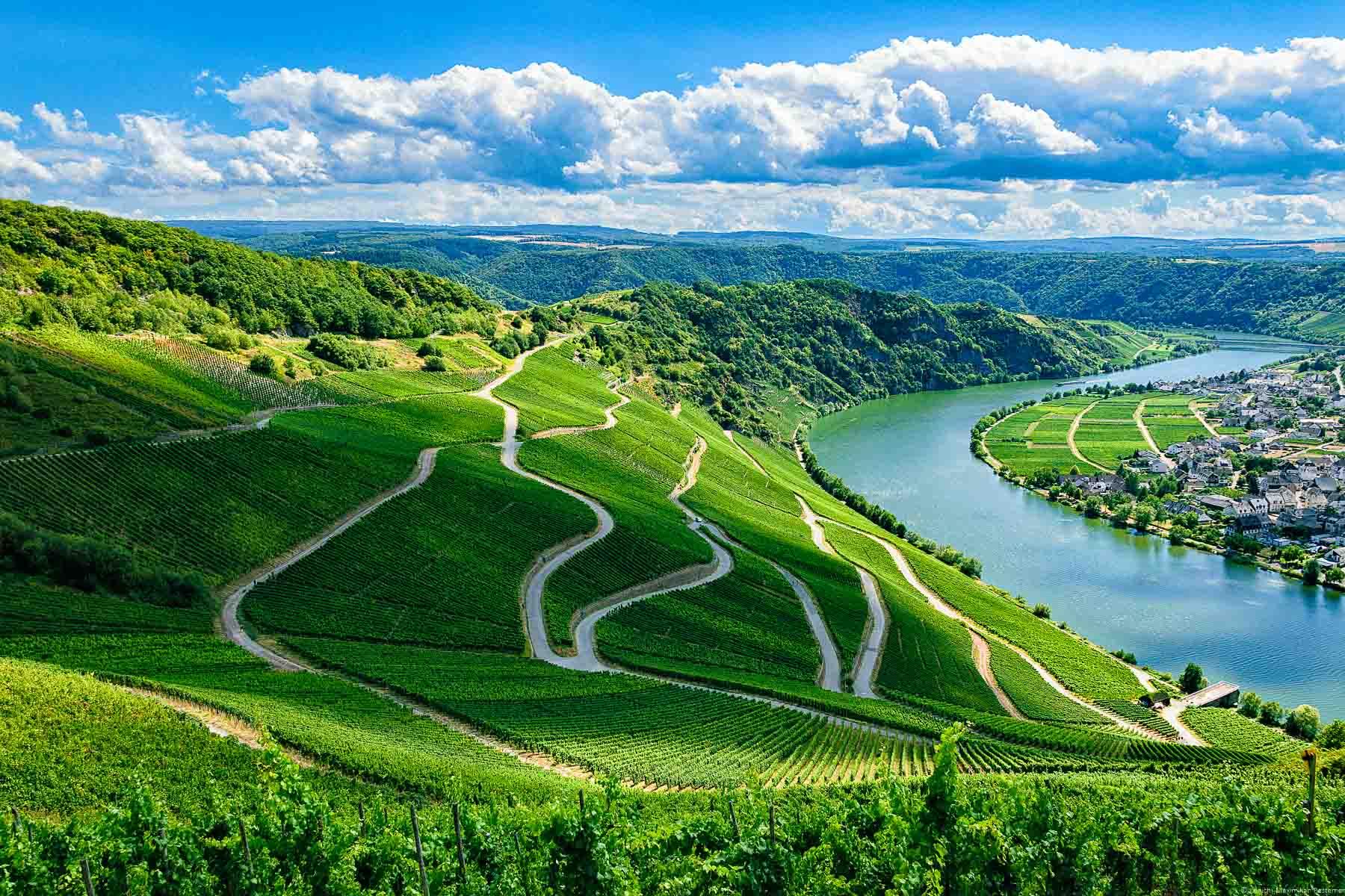 Der Weinberg Piesporter Günterslay befindet sich vorne und auf der linken Seite.. Auf der rechten Seite erkennt man den Fluss Mosel und den Ort Niederemmel. Im Hintergrund erkennt man die Moselloreley, Felsen bewaldete Hügel und blaue Wolken am Himmel.