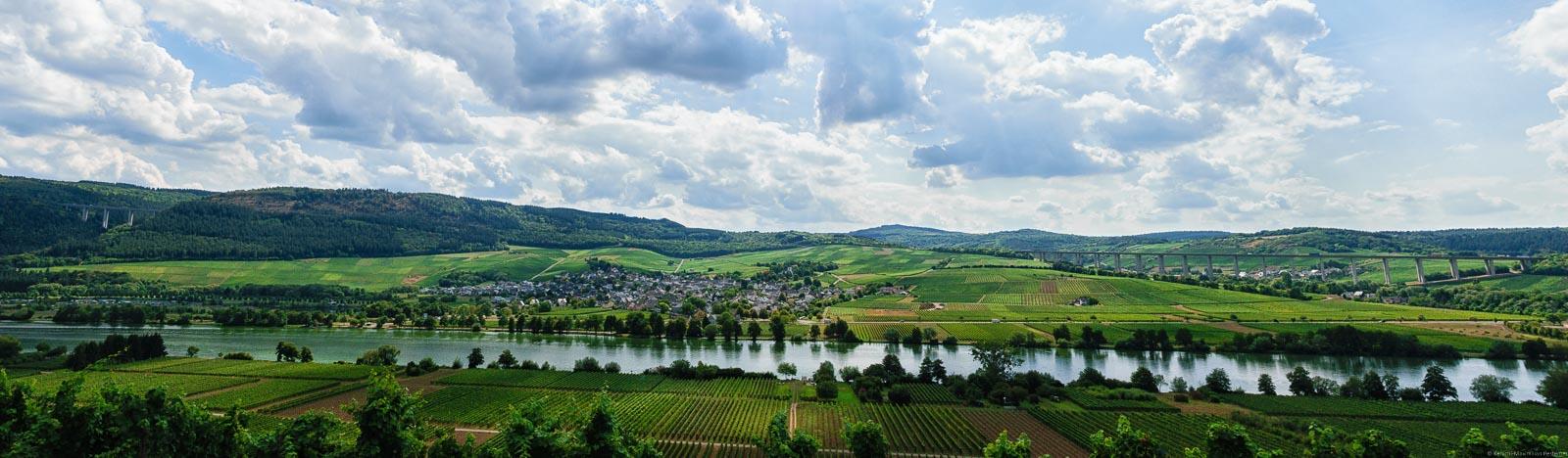 In der Ebenen fließt die Mosel. In der Mitte liegt der Ort Riol. Rund herum liegen Weinberge. Einer der Weinberge ist der Rioler Römerberg.