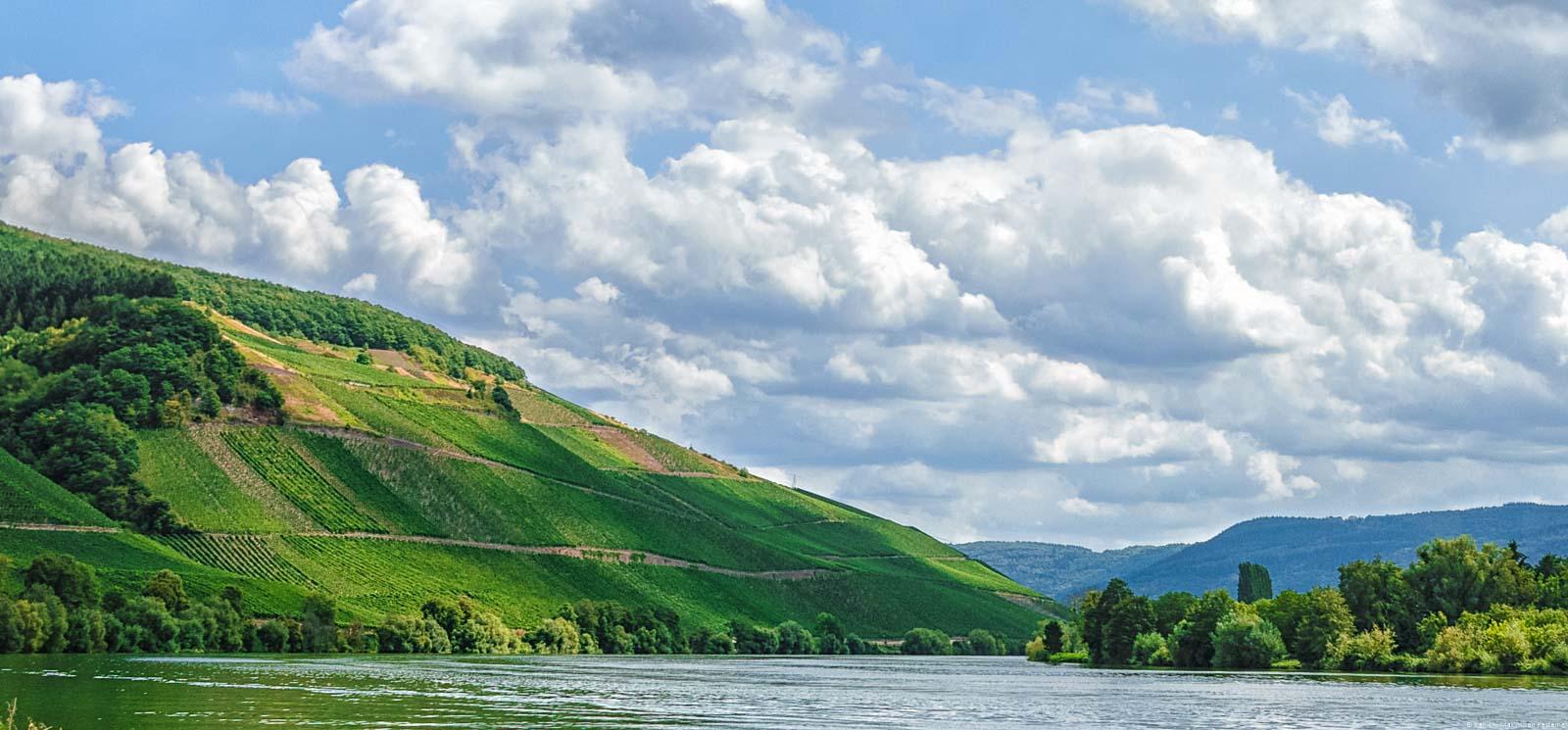 Vorne ist der Fluss Mosel; Dahinter liegen Weinberge. Links oben erkennt man den Longuicher Herrenberg.