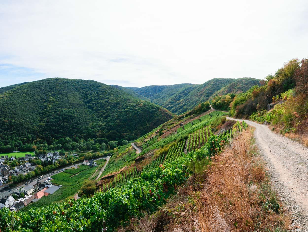 Der steile Weinberg Walporzheimer Domlay liegt vorne. Rechts verläuft ein Weg. Im Hintergrund sind bewaldete Hügel. Unten links liegt der Ort Walporzheim. Wolken sind am Himmel