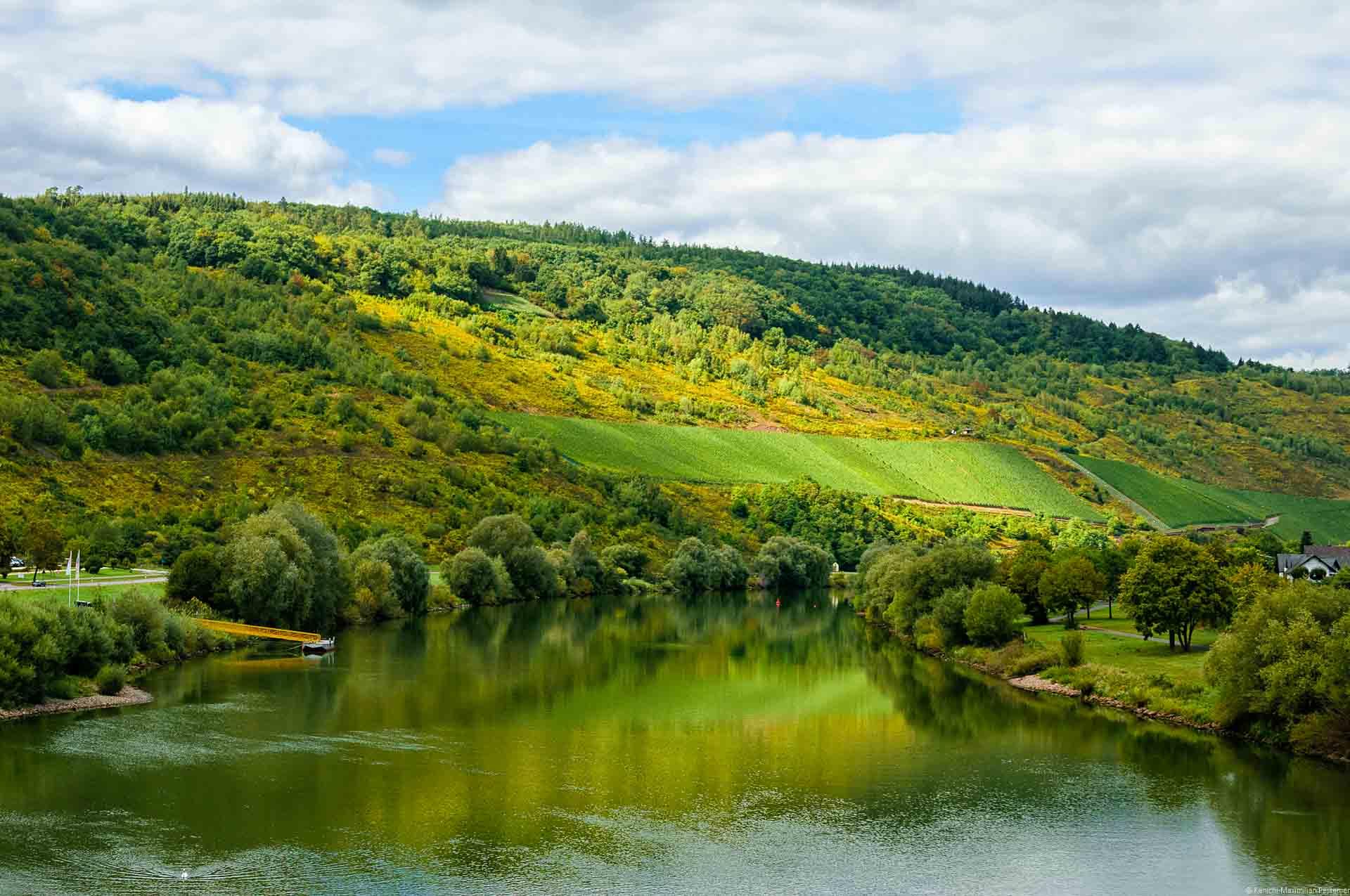 Im Vordergrund fließt die Mosel. Am hinteren Ufer liegt der Weinberg Zeltinger Deutschherrenberg. Oberhalb des Weinberges ist Wald. Der blaue Himmel ist bewölkt.
