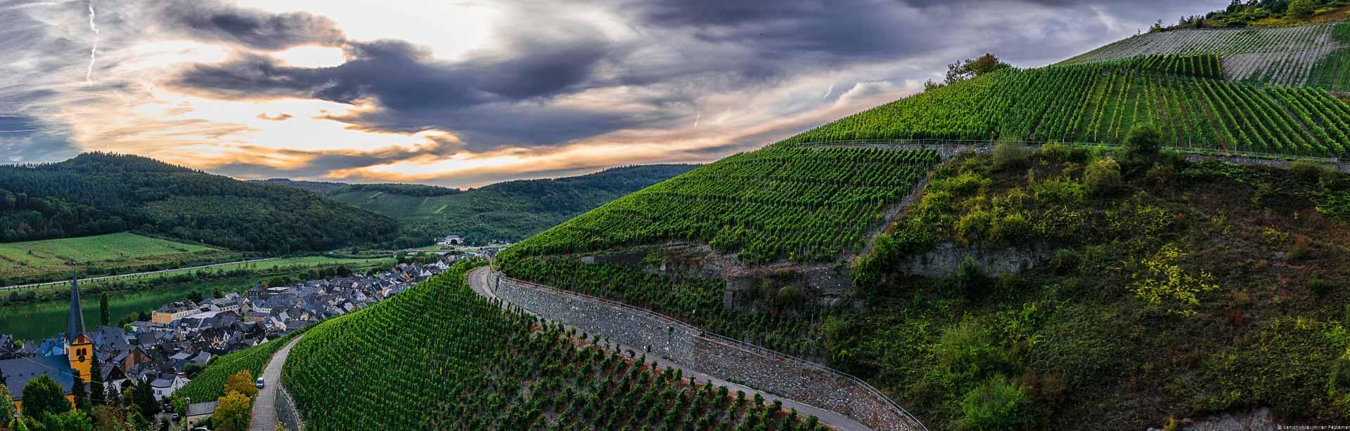 Der Zeltinger Schlossberg bietet auch aufgrund der Klimaerwärmung immer interessantere Parzellen für die Herstellung von Moselwein.