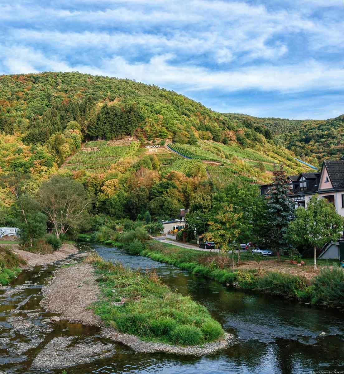 Der Weinberg Recher Hardtberg ist ein alter Weinberg nahe an der Ahr