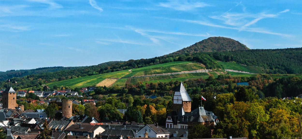 Neben dem Sonnenschein gibt es weitere Weinberge. Dort liegt auch der Weinberg Bachemer Steinkaul. Vorne erkennt man den Ort Bad-Neuenahr.
