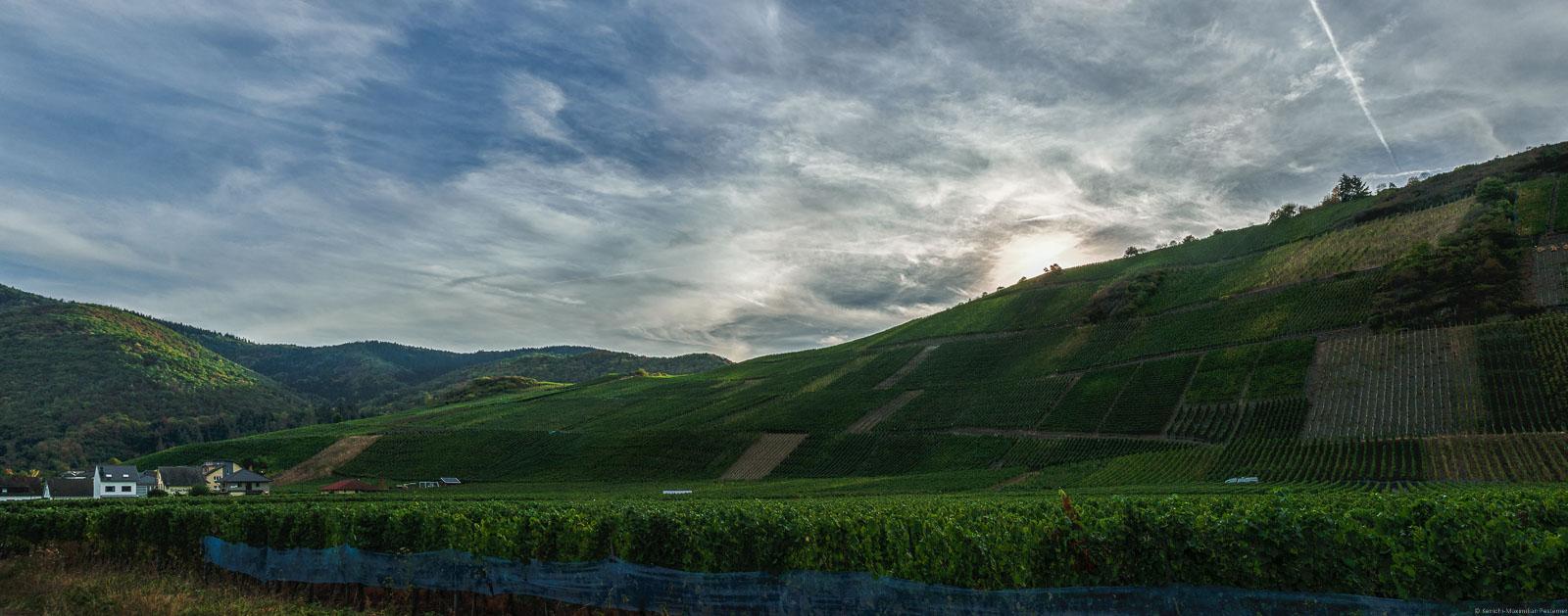 Vorne liegt der flache Weinberg Dernauer Burggarten. In der Mitte liegt der steile Weinberg Recher Herrenberg. Links auf dem Bild sind Häuser. Oben geht die Sonne am Weinberg unter. Der Himmel ist bewölkt.