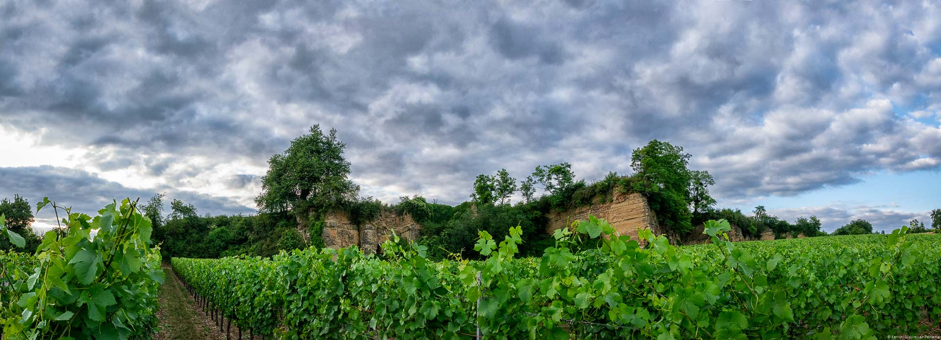 Weinberg mit Felsen aus Muschelkalk sowie bewölktem Himmel bei Sonnenuntergang
