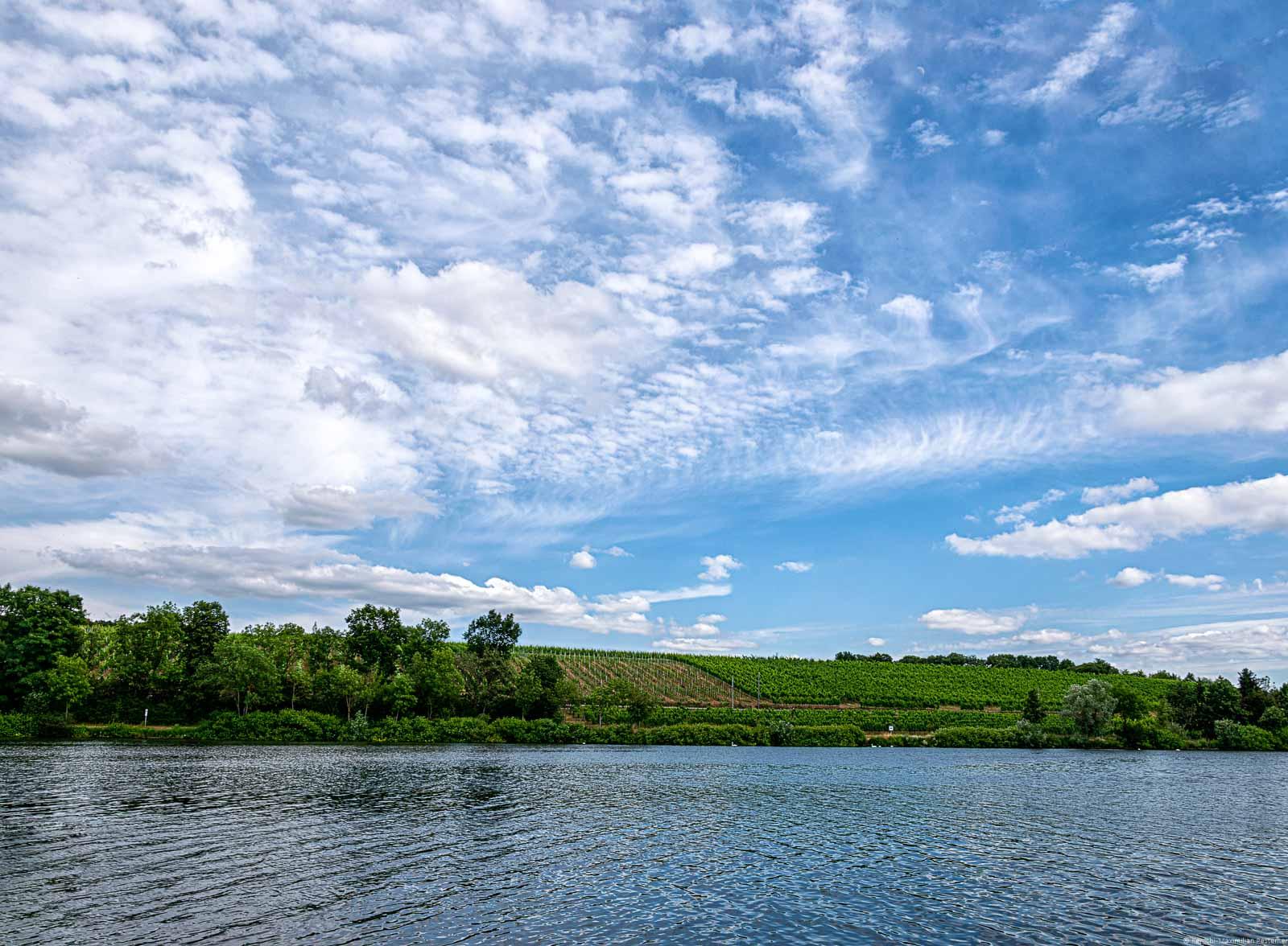 Vorne fließt der Fluss Mosel. Am anderen Ufer liegt ein Weinberg. Der Himmel ist bewölkt.