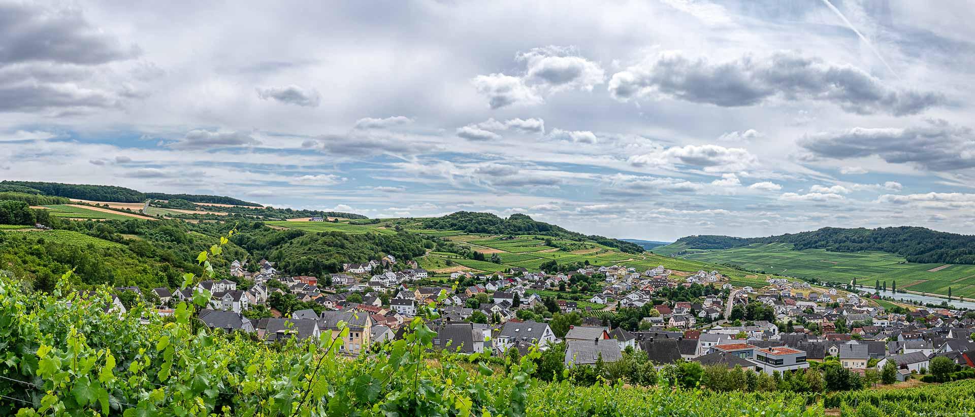 Weinberge im Vordergrund, Dorf in der Mitte, Mosel auf der rechten Seite sowie Weinberge und bewölkter Himmel im Hintergrund