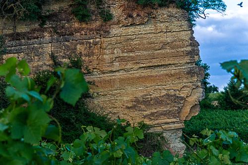 Muschelkalk Fels im Weinberg