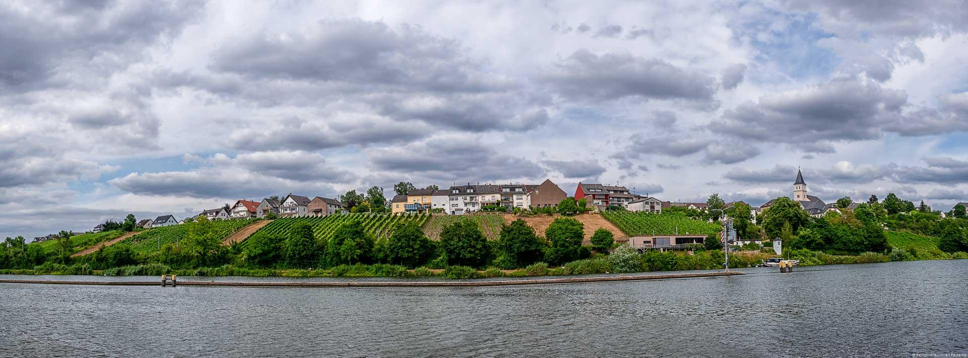 Mosel im Vordergrund mit Weinbergen, Ort und bewölktem Himmel im Hintergrund