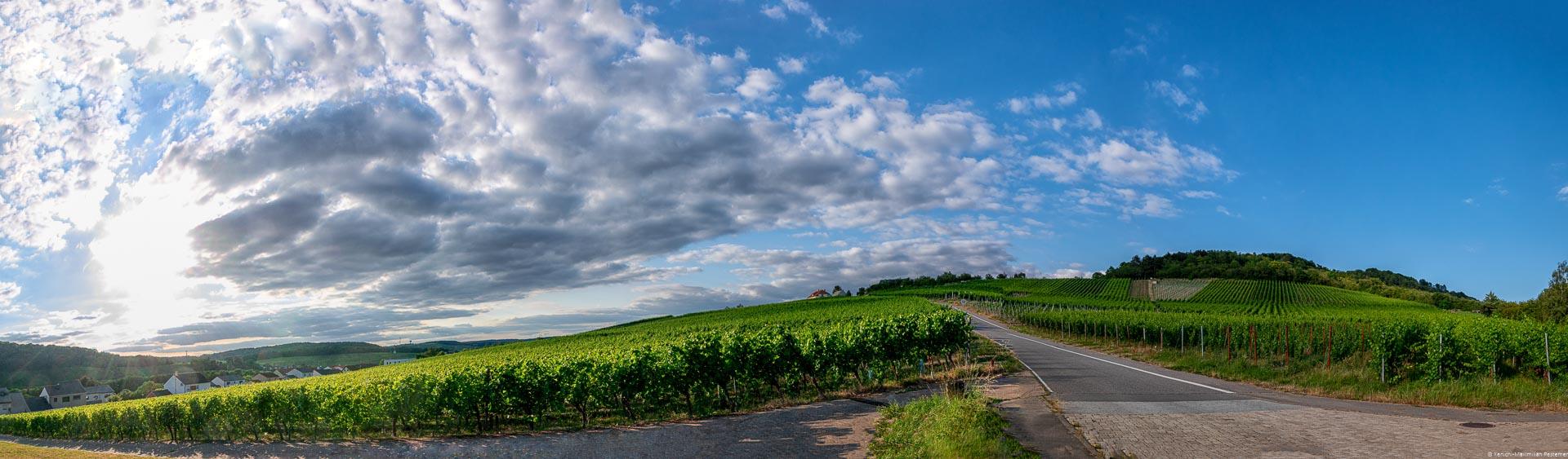 Weinberg, Grenze, drei Orte, bewälkter Himmel, Sonnenuntergang am Dreiländereck von Deutschland, Luxemburg und Frankreich