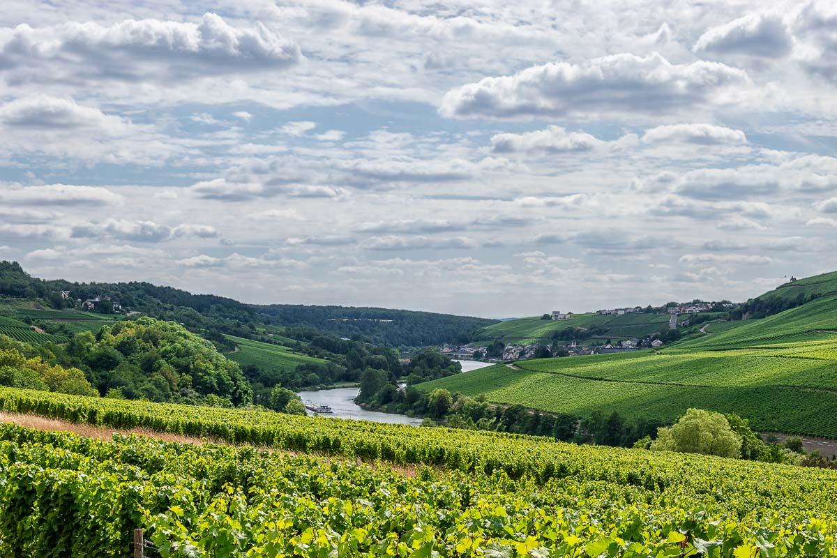 Mosel mit Weinbergen Deutschlands, z.B. der Rehlinger Kapellenberg, und Luxemburgs an beiden Seiten; ein Ort im Hintergrund mit bewölktem Himmel. Man erkennt das Wormeldange Koeppchen.