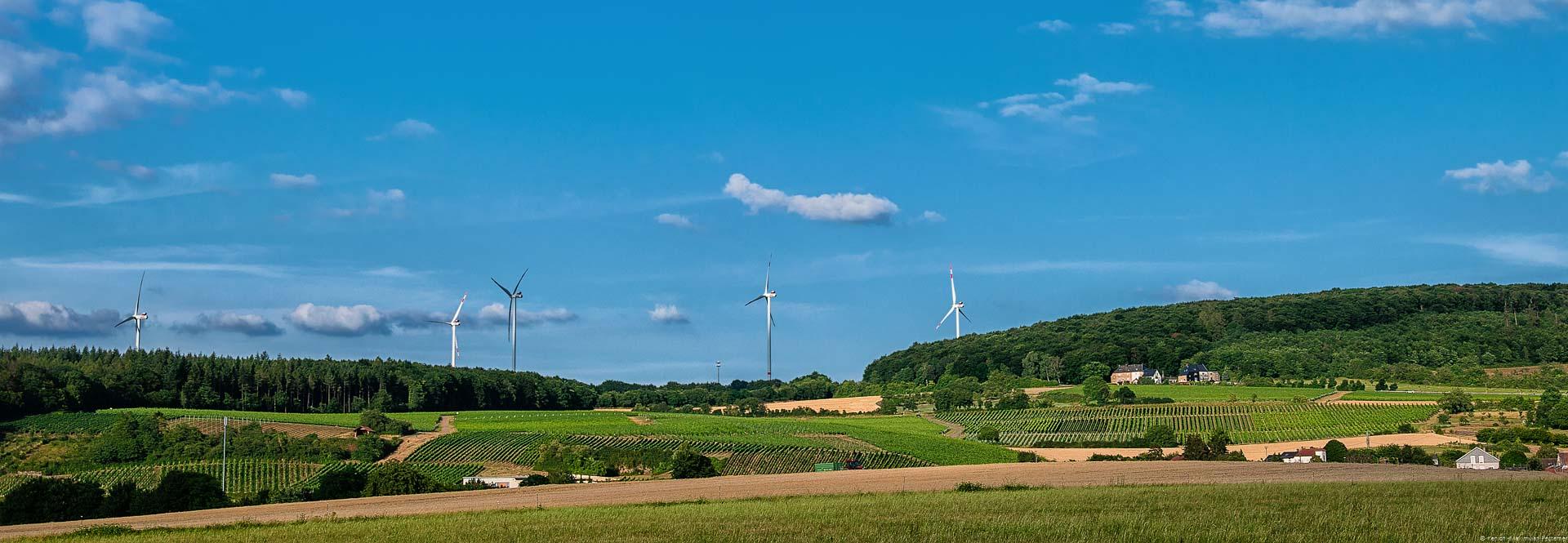 Felder sind im Vordergrund. Der Weinberg Sehndorfer Marienberg befindet sich in der Mitte. Rund herum sind Wälder, Windräder sowie blauer Himmel mit wenigen Wolken.