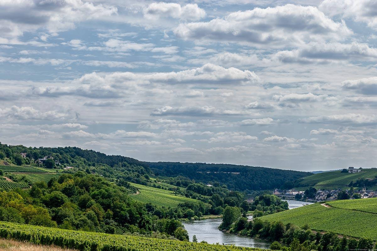 Mosel mit Weinbergen Deutschlands und Luxemburgs an beiden Seiten; ein Ort im Hintergrund mit bewölktem Himmel. Am linken Ufer liegt der Obermosel-Weinberg Wincheringer Burg Warsberg.