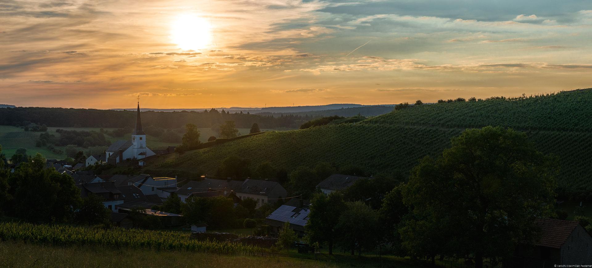 Sonnenuntergang über Krettnach am Weinberg Krettnacher Altenberg und über Ort Krettnach.
