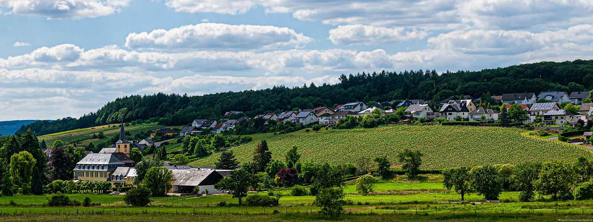 Vorne sind Wiesen und ein Weingut. Dahinter liegt der Weinberg Oberemmeler Agritiusberg und ein Dorf. Oben ist Himmel.