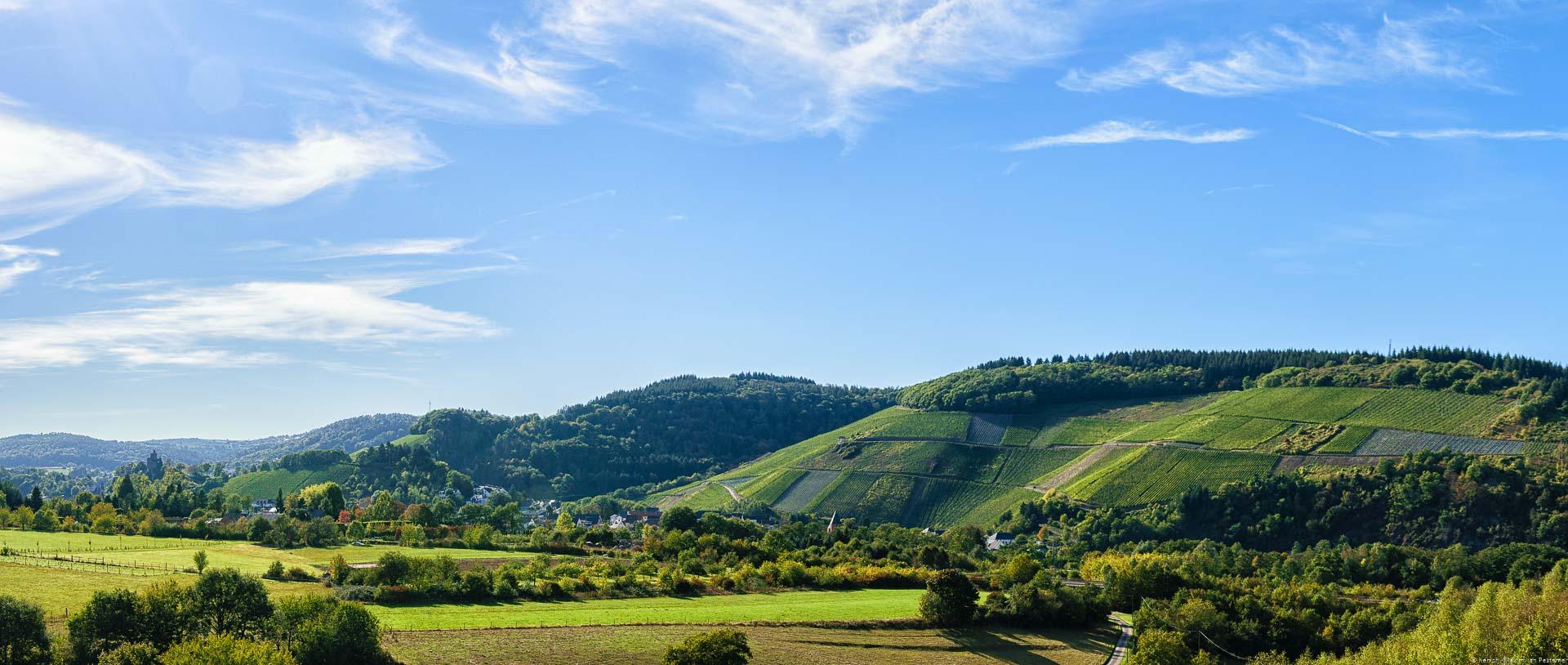Wälder und Felder im Vordergrund dahinter Orte und Weinberge mit blauem Himmel