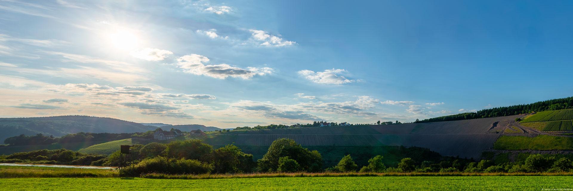 Vorne ist eine Wiese. Dahinter ist Wald. Dahinter liegt der WeinbergSerriger Schloß Saarsteiner Schloßberg mit Weingut und einigen Häuser; Sonne und einige Häuser am Himmel mit Wolken.