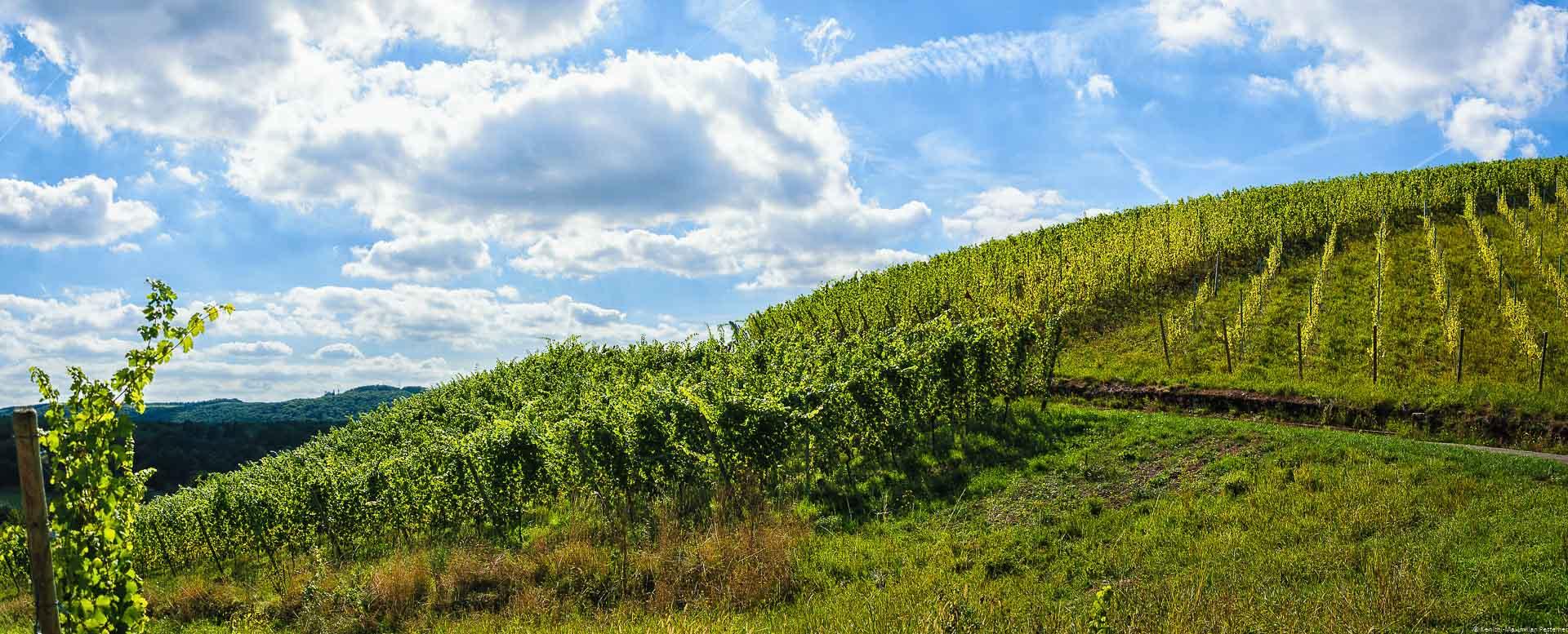 Wolken ziehen über diesen alten Weinberg Wawerner Herrenberger an der Saar.