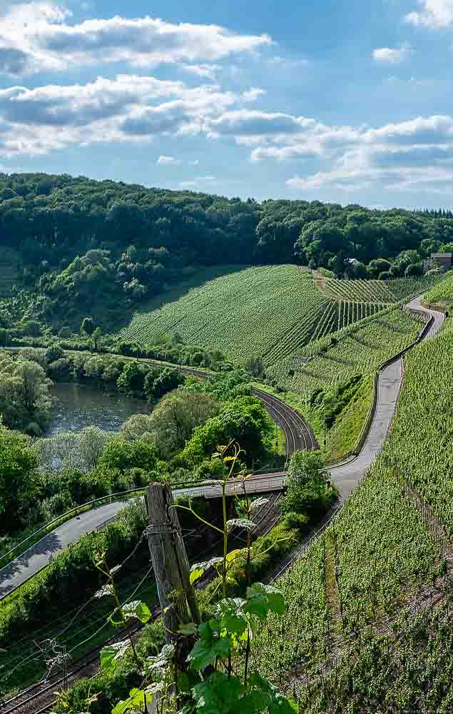 Unten links verläuft die Saar. Am rechten Hang liegt der Weinberg Wiltinger Hölle. Unterhalb des Weinberges verläuft eine Bahnstrecke. Hinten ist ein bewaldeter Hang. Am blauen Himmel sind Wolken.