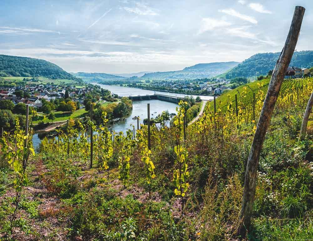 Der Marienberg liegt gegenüber von Schoden. Von dort hat man einen Ausblick auf die Saar-Ebene.