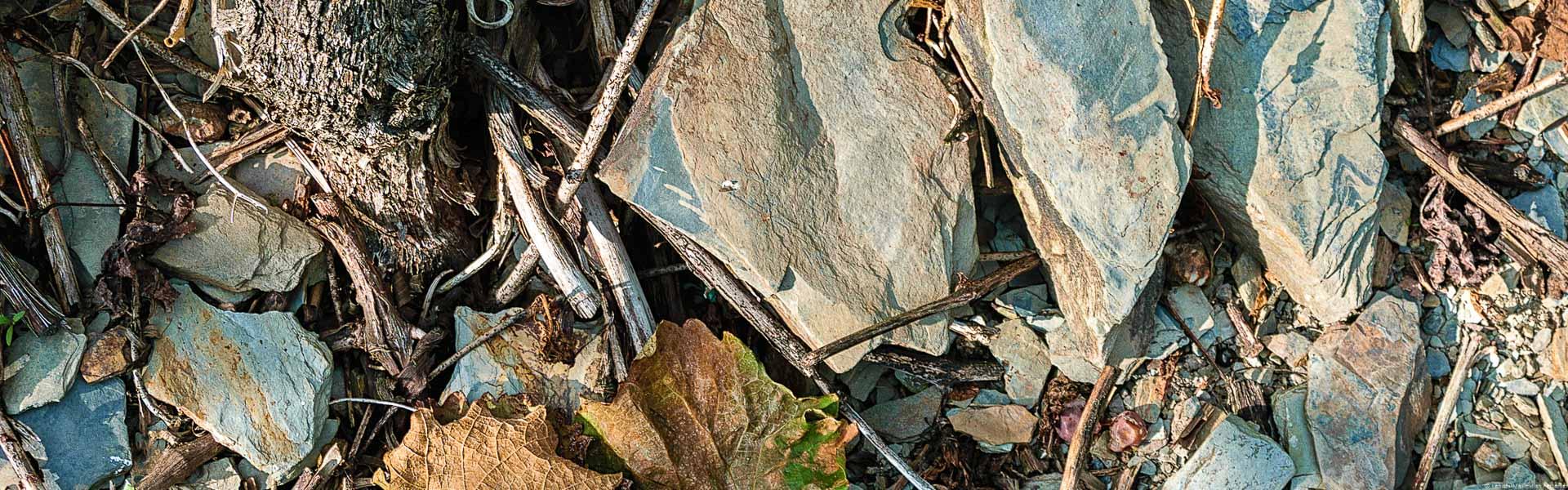 Blaue und graue Schiefer sind für die Mosel typisch.