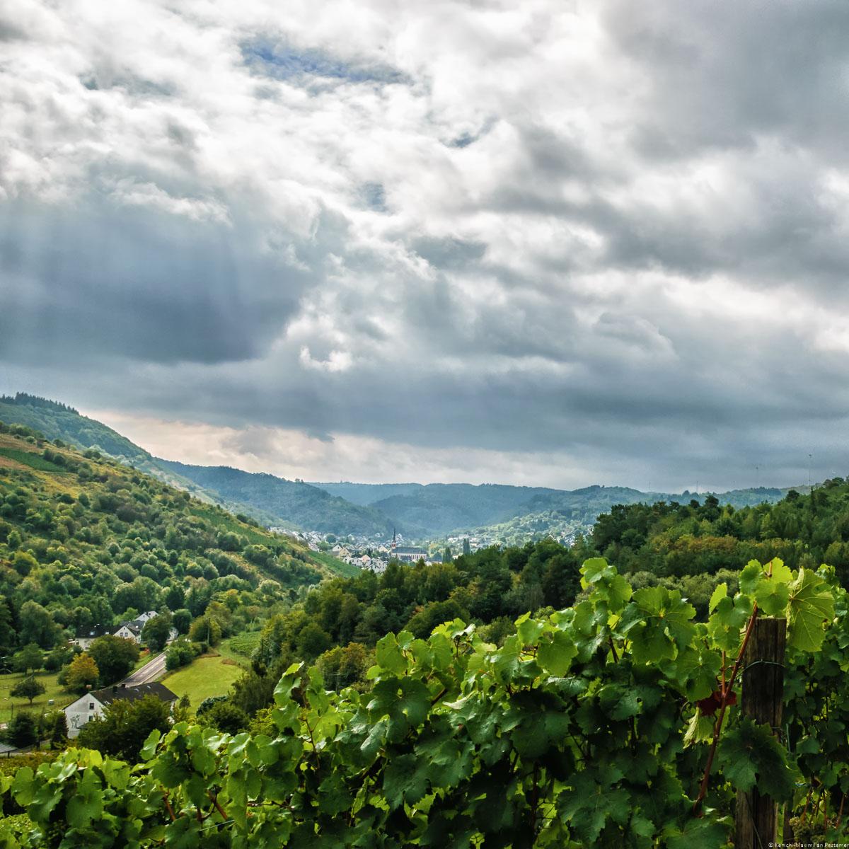 Vom Feller Maximiner Burgberg aus kann man einen dynamischen Blick ins Feller Tal werfen. Im Hintergrund erblickt man bewaldete Hügel. Der Himmel ist bewölkt.