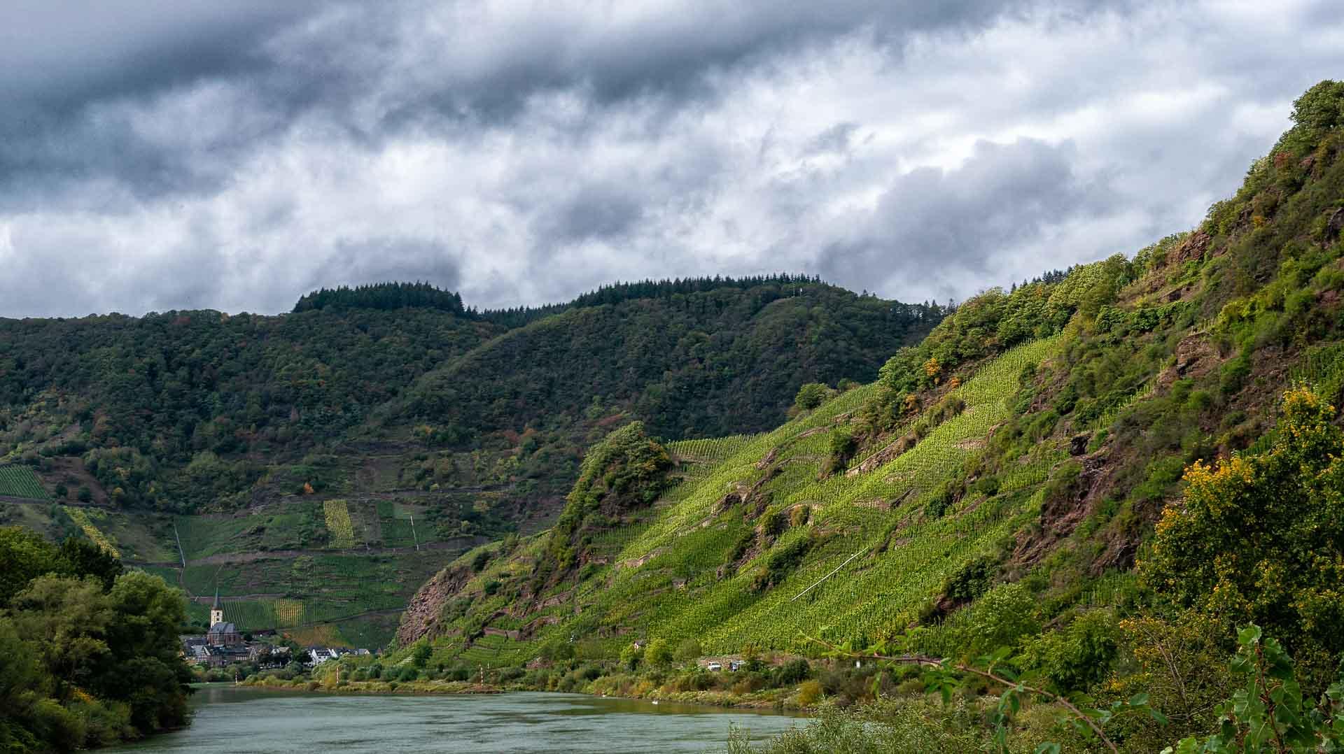 Blick auf den Weinberg Neefer Frauenberg mit Calmont im Hintergrund. Vorne fließt der Fluss Mosel. Am Himmel sind Wolken.