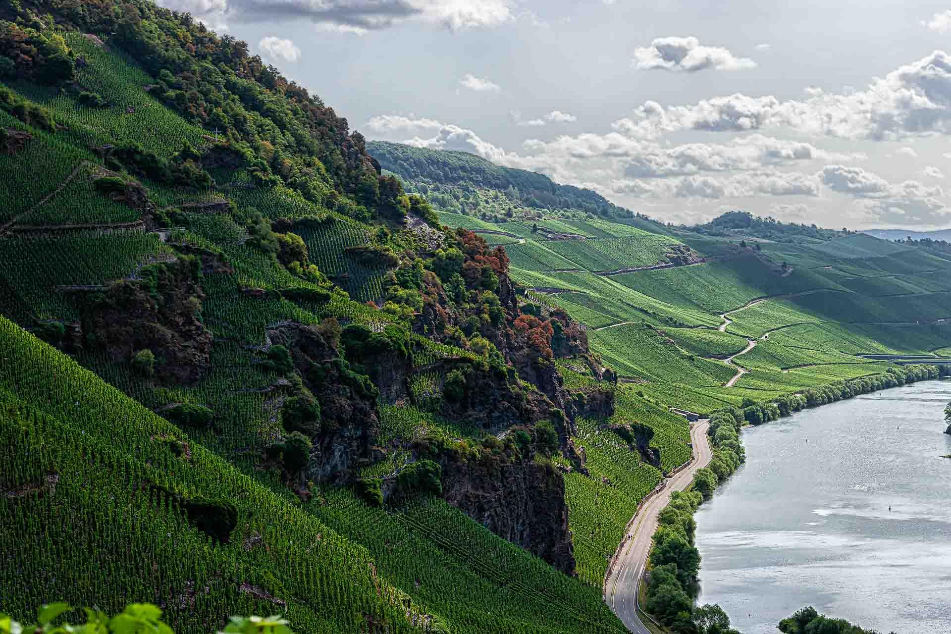 Steiler Weinberg Erdener Prälat, rote Felsen, Mosel rechts unten, Wolken im Hintergrund,