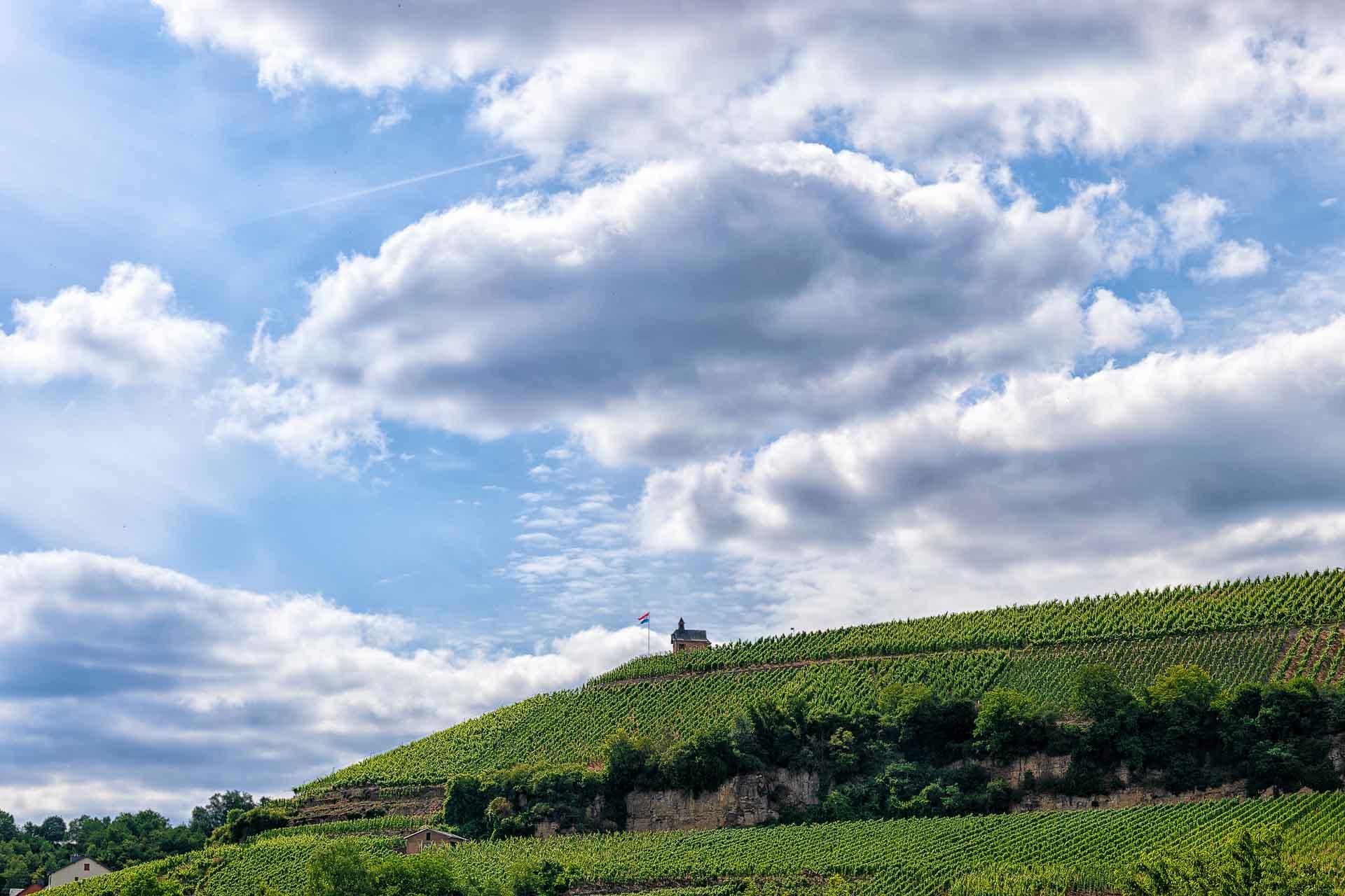 Man sieht den Weinberg Wormeldange Koeppchen mit einem Häuschen und der Flagge Luxemburgs bei sonnigem Wetter und einigen Wolken. Der Himmel ist blau.