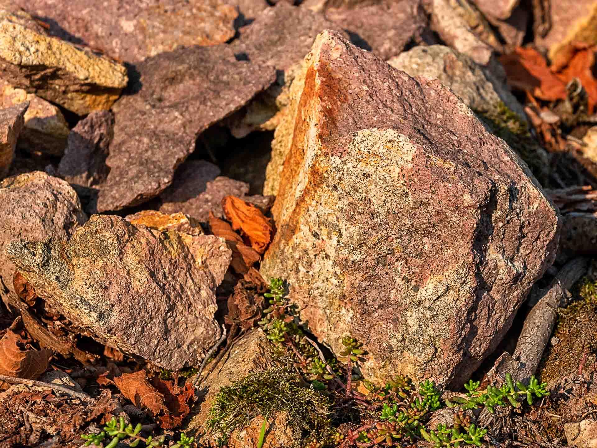 Dieses Rhyolith-Gestein auf dem Weinberg Siefersheimer Heerkreetz ist Weiß, Gelb, Rot und Magenta