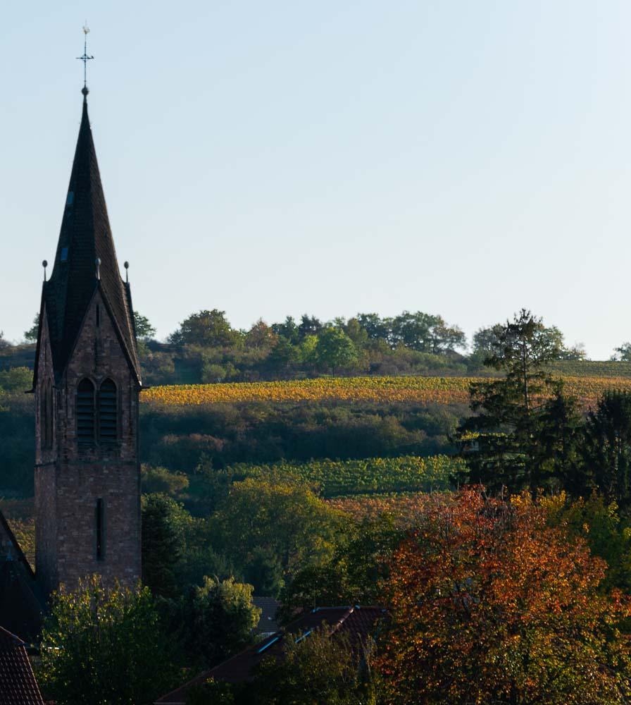 Kirchturm im Weinbaugebiet Rheinhessen bei Siefersheim; Bäume; Weinberg; blau-grauer Himmel