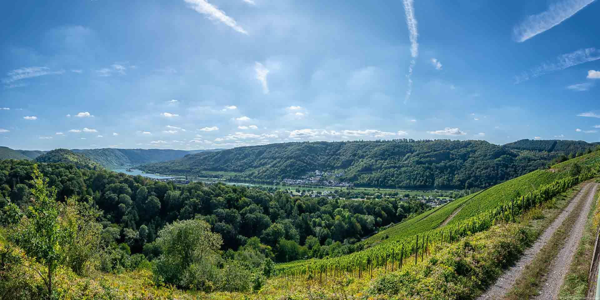 Auf der anderen Uferseite der Mosel erkennt man Kövenig. Vorne liegt der Weinberg Enkircher Monteneubel.