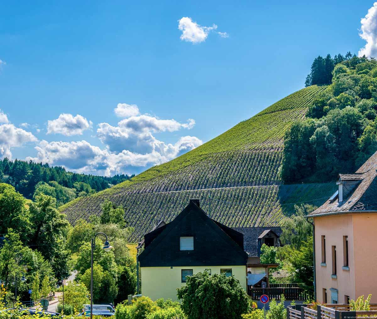 Ort Mertesdorf und Weinberg Waldracher Laurentiusberg mit blauem Himmel und einigen Wolken