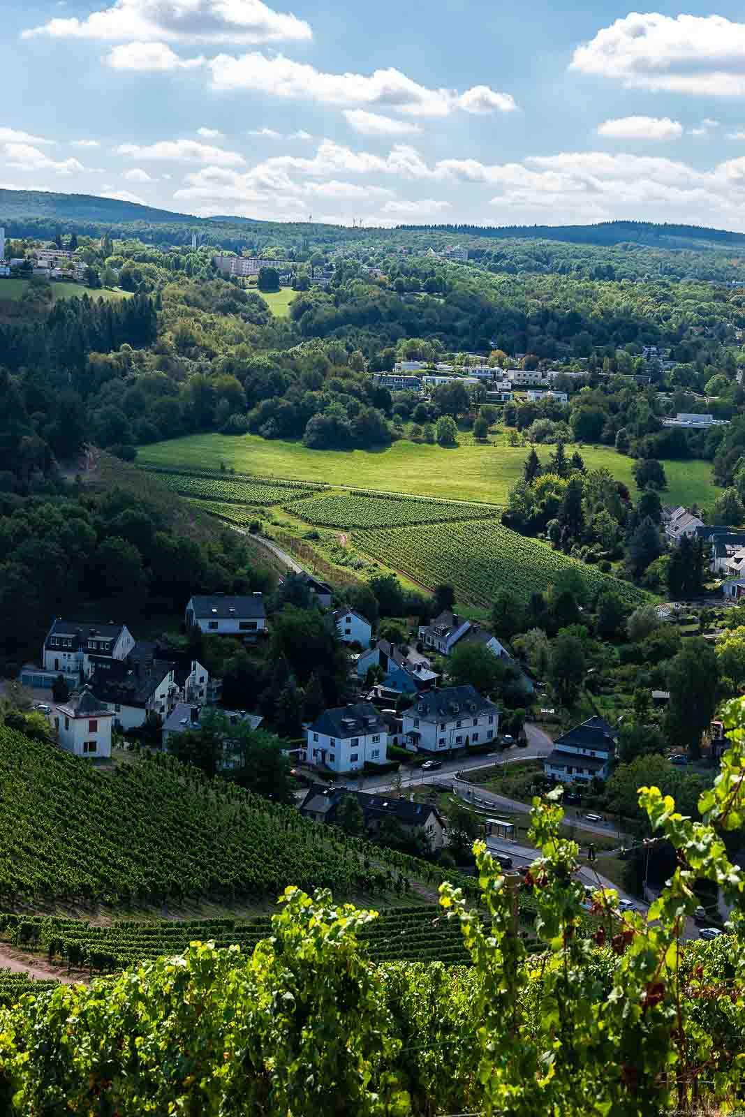 Vom Deutschherrenberg blickt man auf das Olewiger Tal mit dem Trierer Benediktinerberg