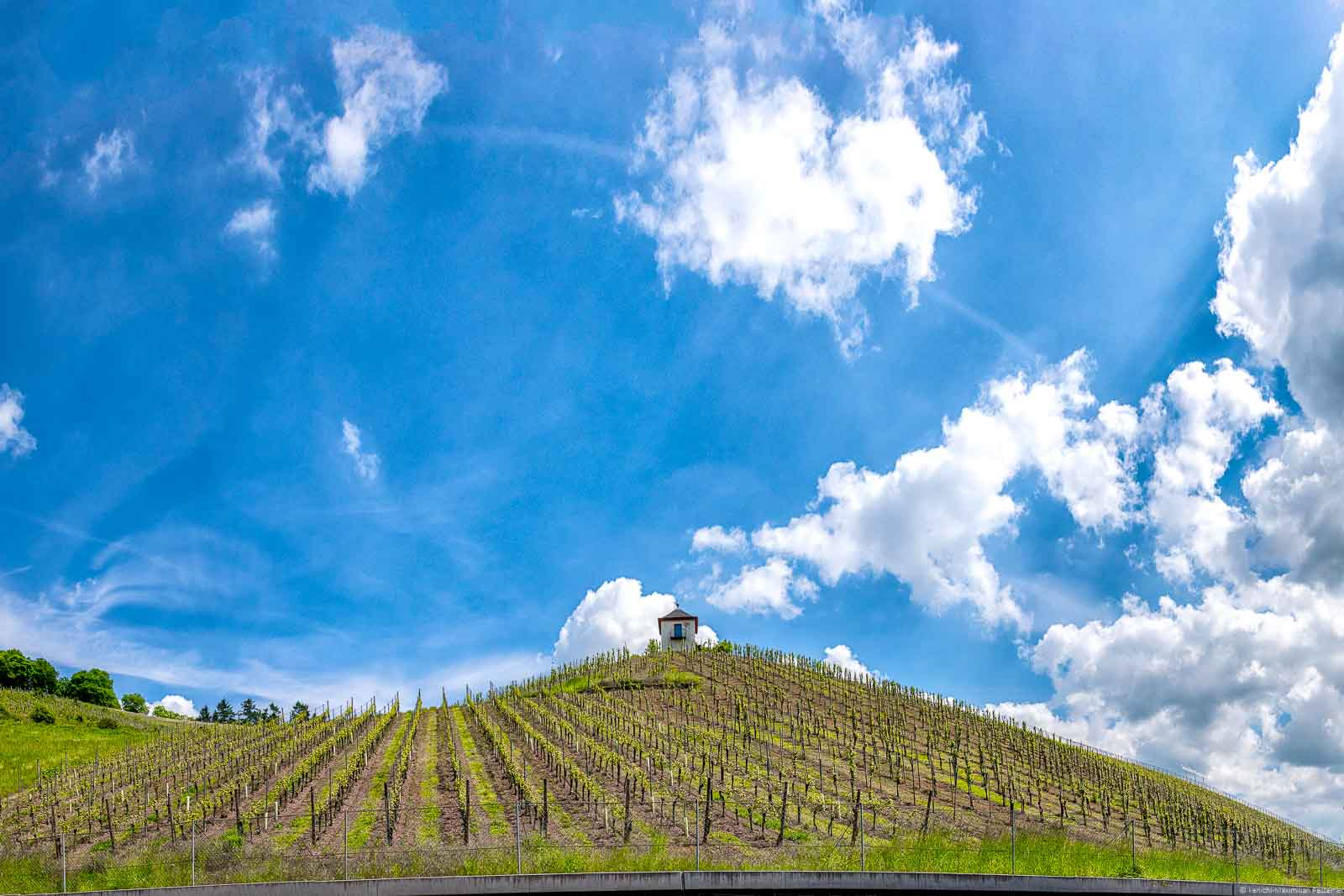 Kleines weißes Häuschen auf Weinberg Trierer Deutschherrenköpfchen mit bewölktem blauen Himemel
