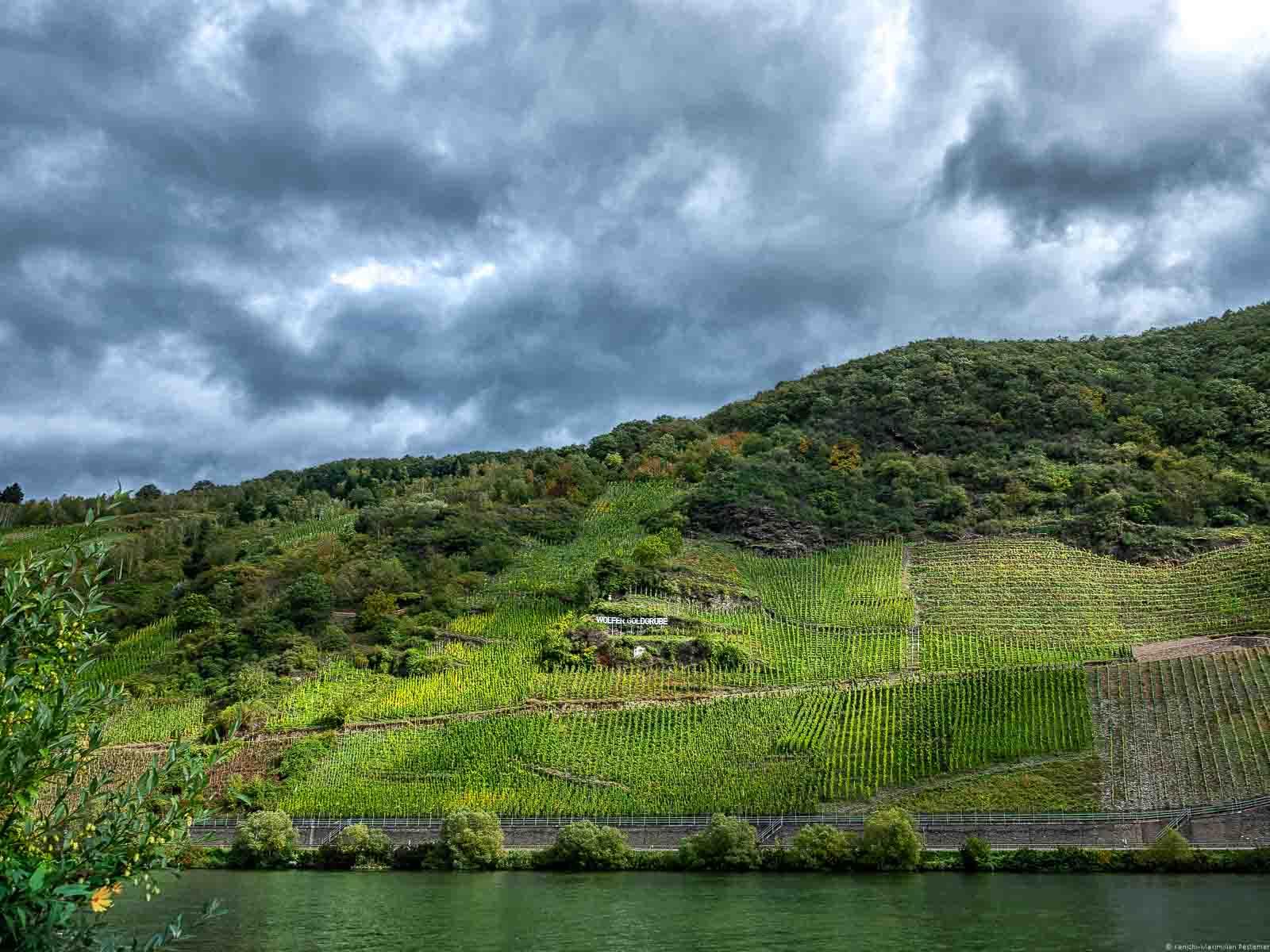 Fluss Mosel, steiler Weinberg Wolfer Goldgrube, Wolken