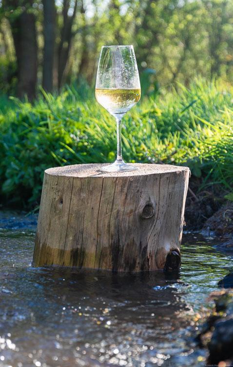 Bach, Riesling im Weinglas auf Holzklotz, Gräser, Bäume, Sonnenstrahlen