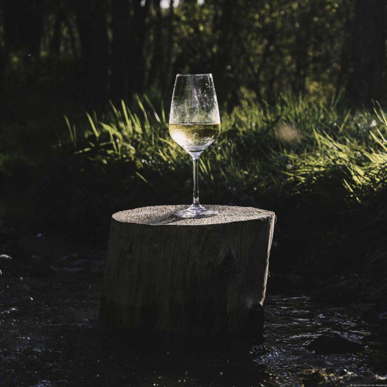 Glas für Weißweine mit Riesling gefüllt auf Baumstumpf in einem Bach sowie Gräsern und Bäumen im Hintergrund