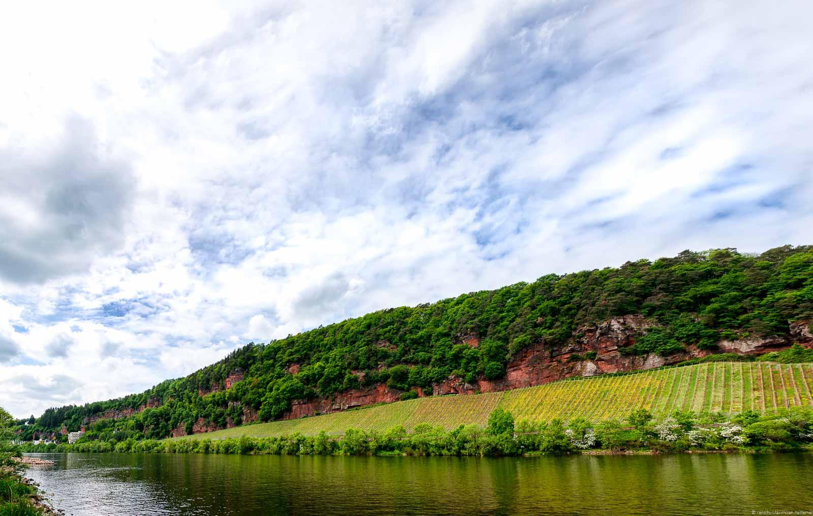 Vorne fließt die Mosel. Am gegenüberliegenden Ufer erkennt man den Weinberg Trierer Augenscheiner. Oberhalb des Weinbergs sind rote Felsen mit Wald. Links hinten sind einige Häuser. Der Himmel ist bewölkt.