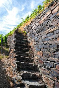 Man erkennt eine Treppe aus Schiefer und Grauwacke im Weinberg Ahrweiler Silberberg. Am Himmel sind oben einige Wolken.