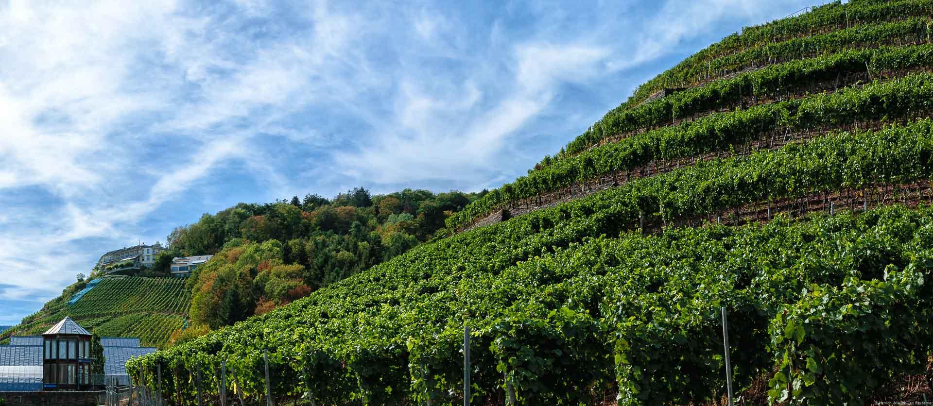 Der Weinberg Ahrweiler Silberberg ist auf der rechten Seite des Bildes. Auf der linken Seite erkennt man die Silberschmelze. Im Hintergrund ist der Weinberg Kräuterberg. Auf dem Hügel ist ein Haus und man erkennt Bäume. Am blauen Himmel sind Schlieren einiger weißer Wolken.