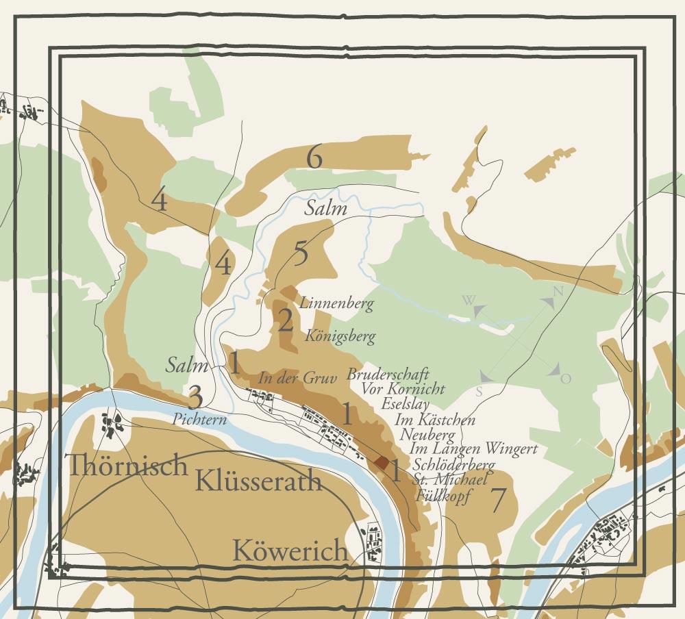 Alte Weinbau-Karte des Weinbergs Klüsserather Brüderschaft mit einzelnen Parzellen